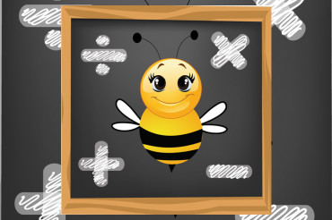 Math Bee at the Johnson Community Library July 15