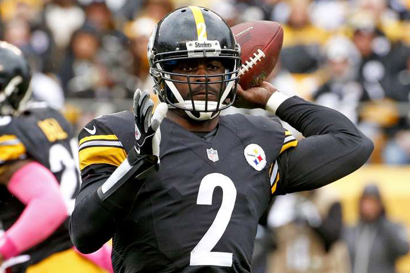 Mike Vick hoping for one more season in Pittsburgh