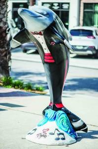 Rhythm Dolphin