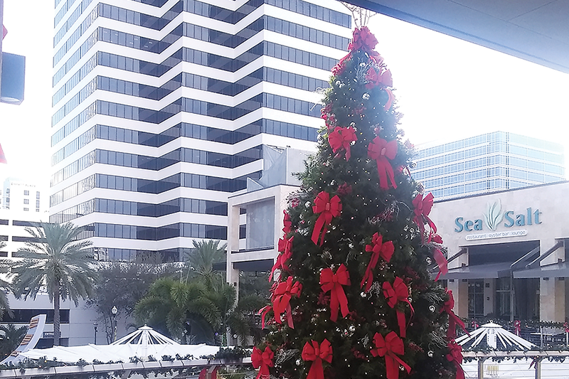 Christmas-Star-Faye-Tippy.png