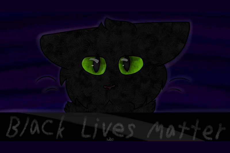 VOY_Cat.png
