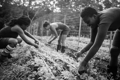 black-culture-food-nurture.png
