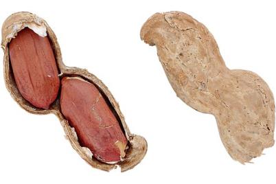 health-peanut.png