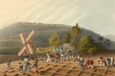 history-Emancipation-Liberation.png