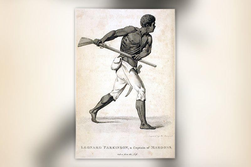 LeonardParkinsonMaroon.jpg