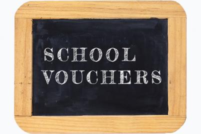 SchoolVouchers.png