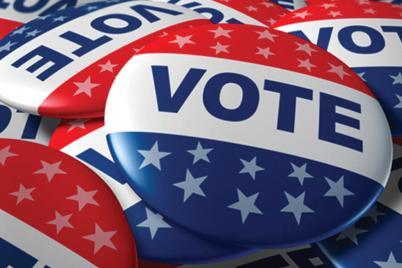 Vote-ProposedAmendments1.png