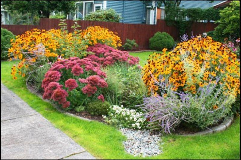 colorful-rain-garden.jpg